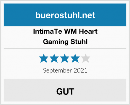 IntimaTe WM Heart Gaming Stuhl Test