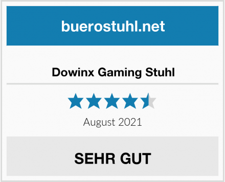 Dowinx Gaming Stuhl Test