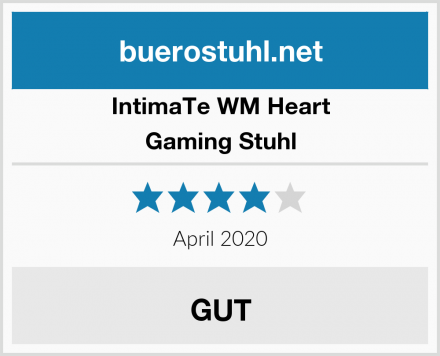 IntimaTe WM Heart Gaming Stuhl Test