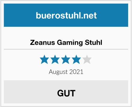 Zeanus Gaming Stuhl Test